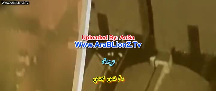 arablionz.tv in english